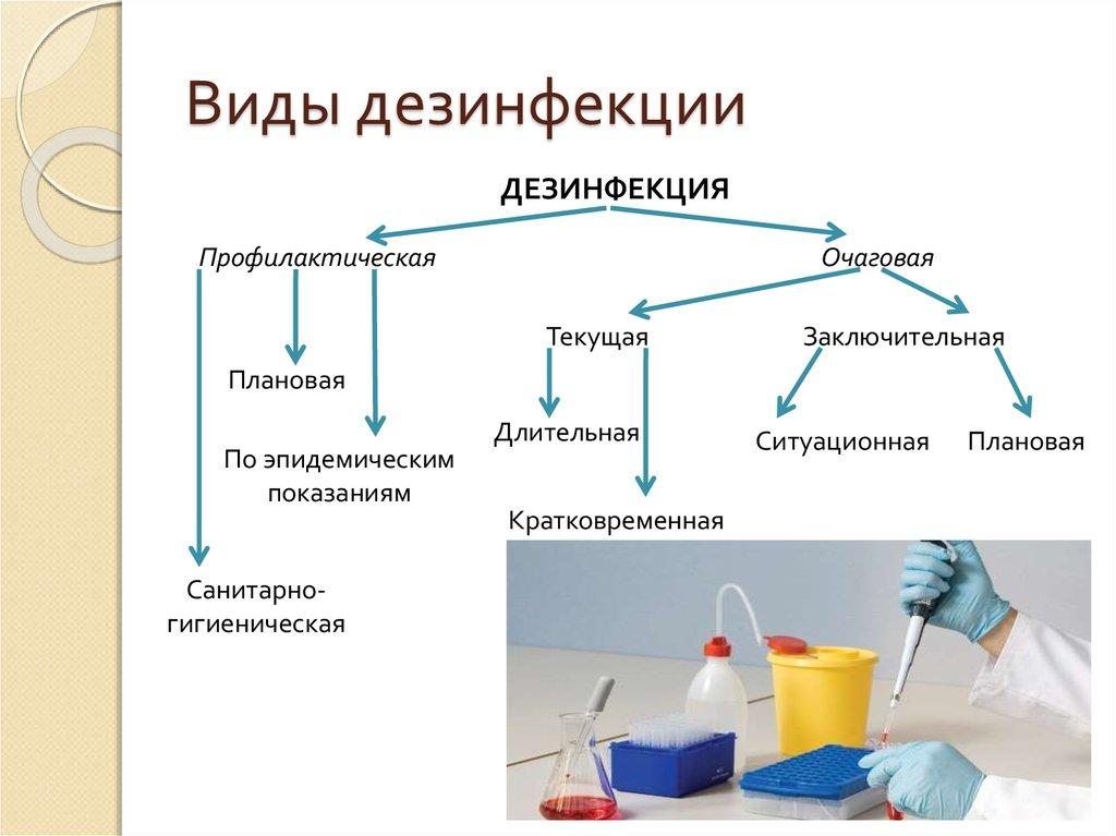 Три лучших средства для проведения качественной дезинфекции курятника