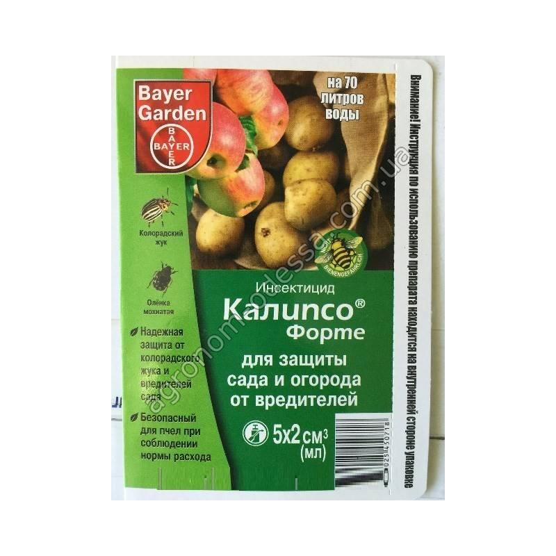 Регент от тараканов: инструкция по применению средства, цена и отзывы