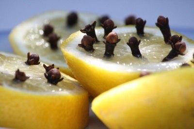 Избавиться от комаров – легко! лимон и гвоздика против надоедливых насекомых