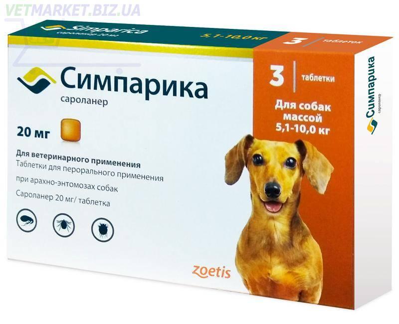 Барс форте для собак — серия препаратов от клещей, блох, грибков и опасных микроорганизмов. препарат барс форте для собак и щенков: правила использования и аналоги
