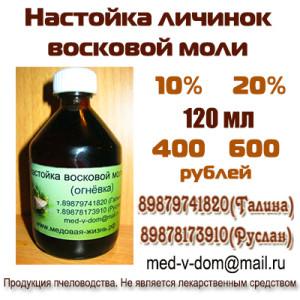 Восковая моль (огневка пчелиная) – настойка, экстракт восковой моли