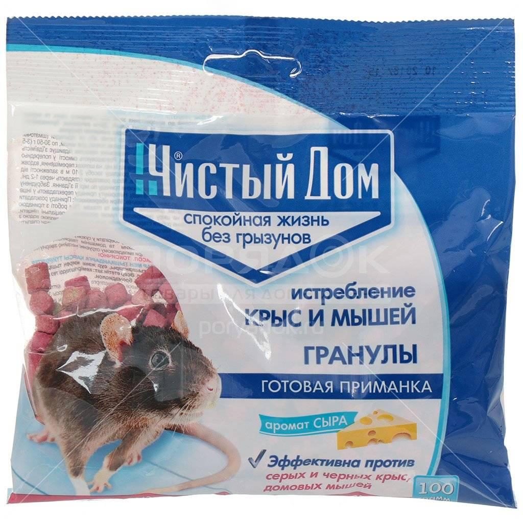 Как избавиться от крыс в доме - 10 лучших препаратов - обнаружил.ру