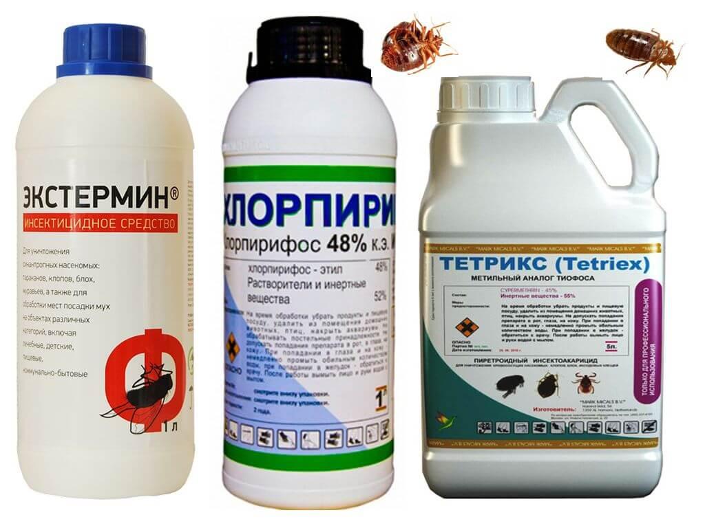 Профессиональные препараты от клопов и тараканов, препараты сэс для уничтожения насекомых