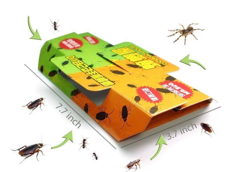 Чего боятся тараканы – профилактика появления и избавление от усатых «друзей»