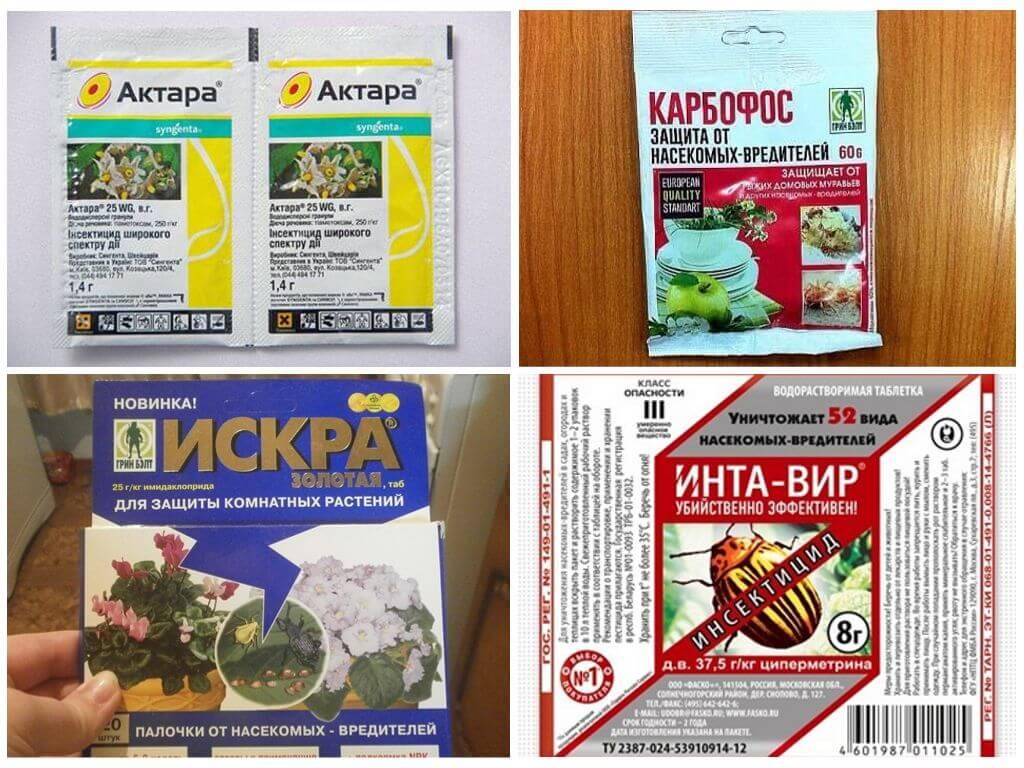 Актара жидкая: инструкция по применению для дома и сада