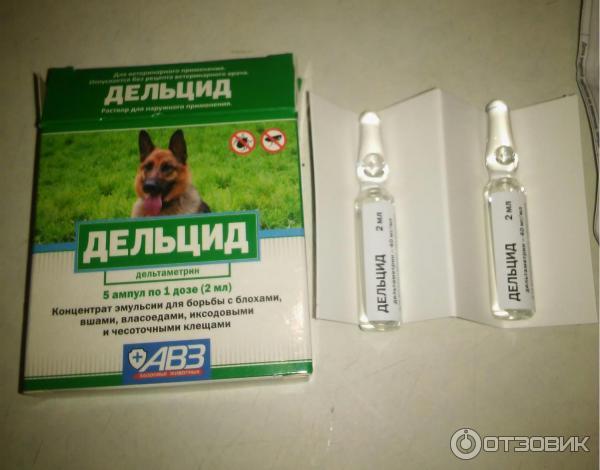 Применение бутокса в ветеринарии и дезинфекции помещений