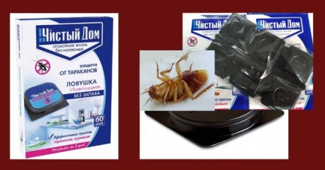 """""""дельта зона"""" от клопов и тараканов: инструкция, описание, отзывы"""