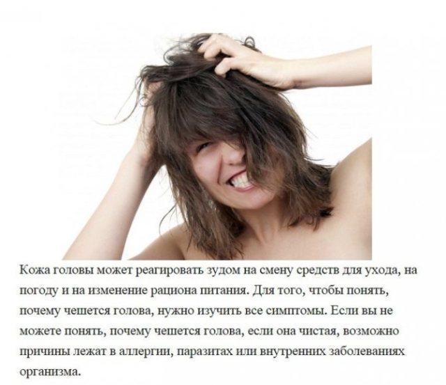 Сколько и почему после обработки от вшей чешется голова