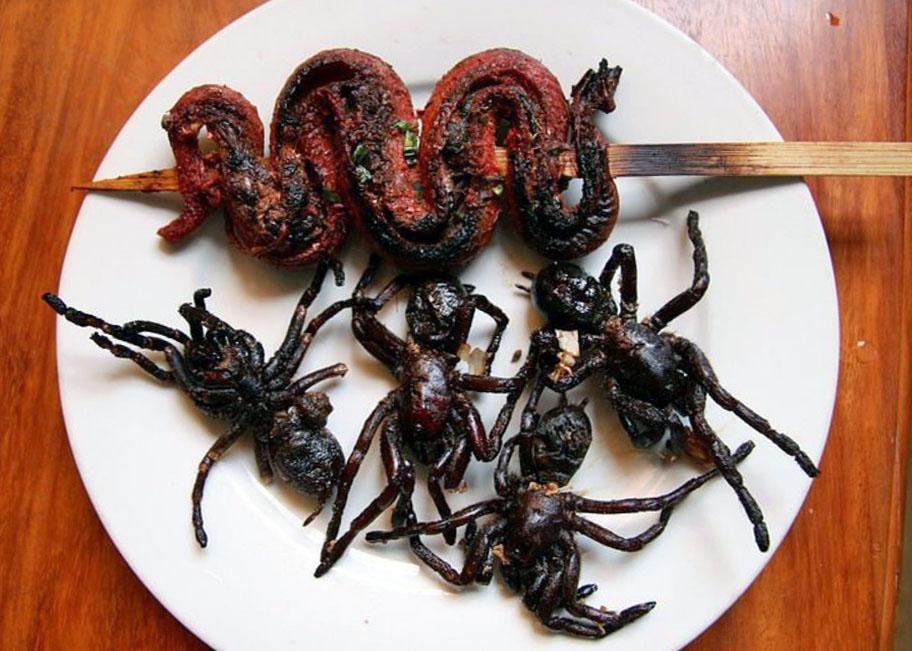 Еда из насекомых: главный тренд мирового foodtech-рынка :: рбк тренды