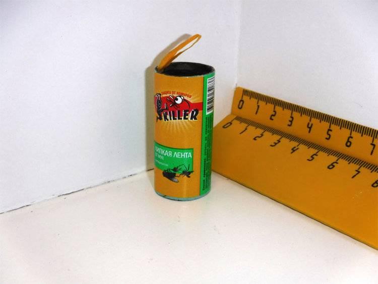 Как сделать ловушки для мух: варианты мухоловок, от клеевых до электрических