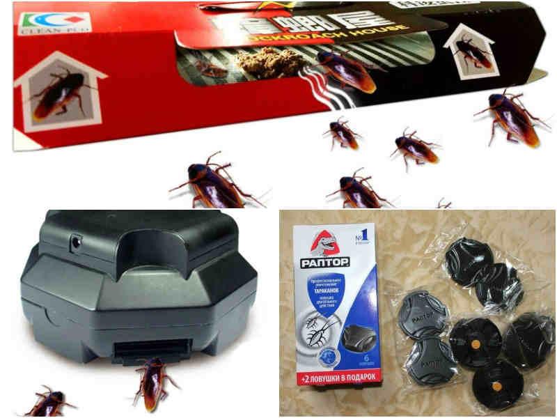 Как бороться с тараканами припомощинародных средств