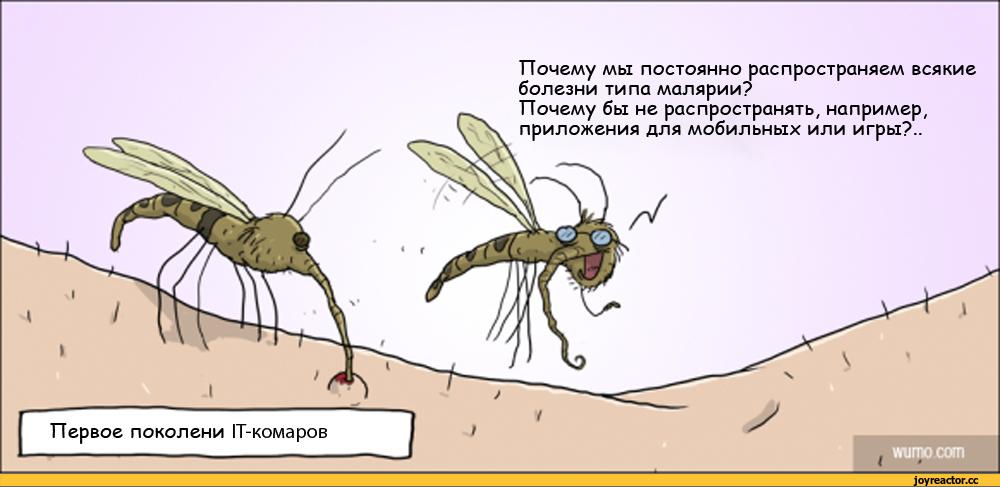 Как появляются и где живут комары?