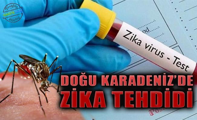 Турция: разобрались с помидорами - появились комары