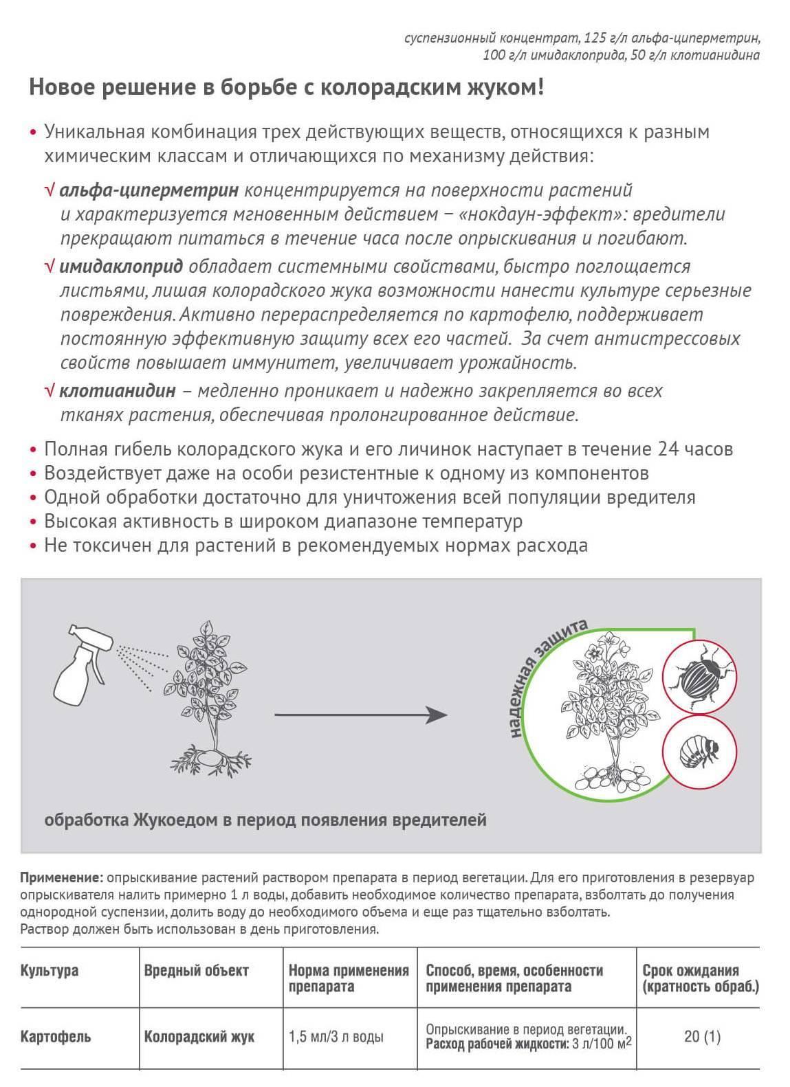 Как правильно разводить и использовать препарат Жукоед против колорадского жука