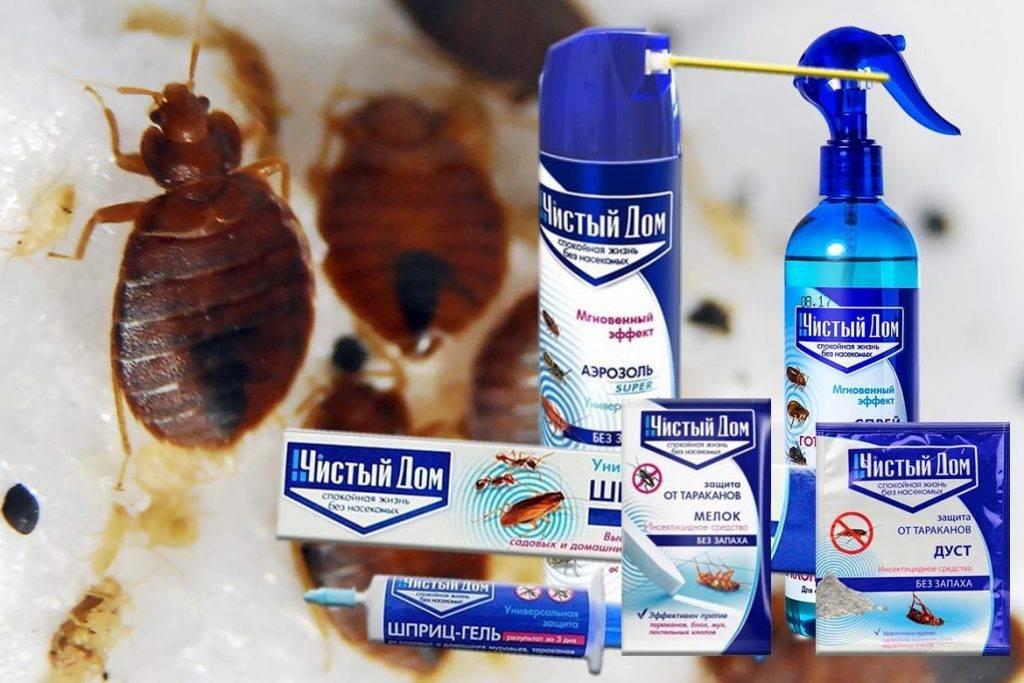 """Средство от тараканов """"чистый дом"""": отзывы, форма выпуска, инструкция по применению"""