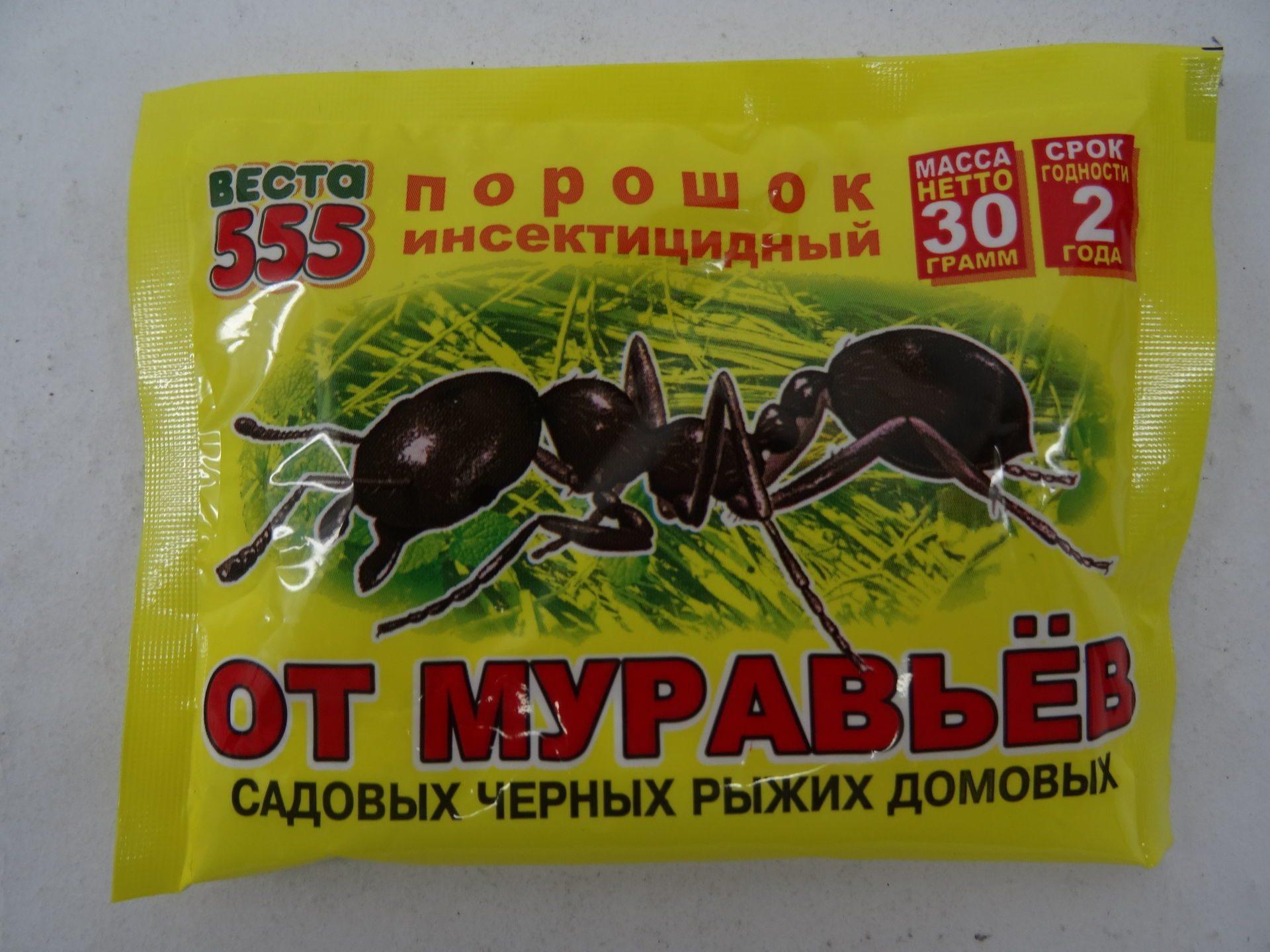 Средства от муравьев в квартире: эффективное народные средства