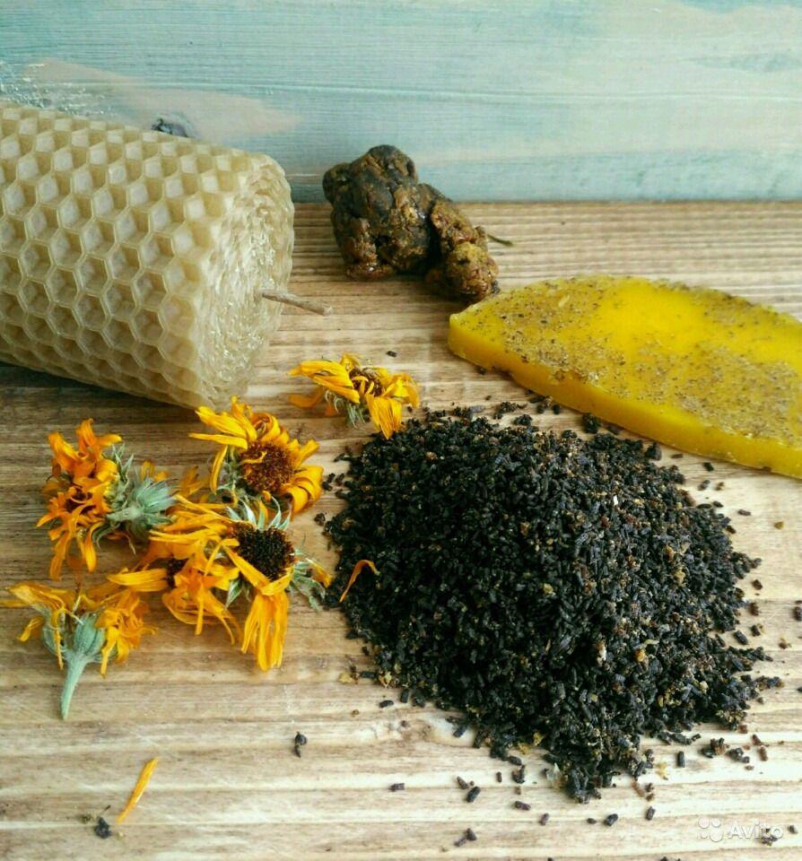 Применение пчелиной моли (пчелиная огневка): применение в народной медицине в лечебных целях