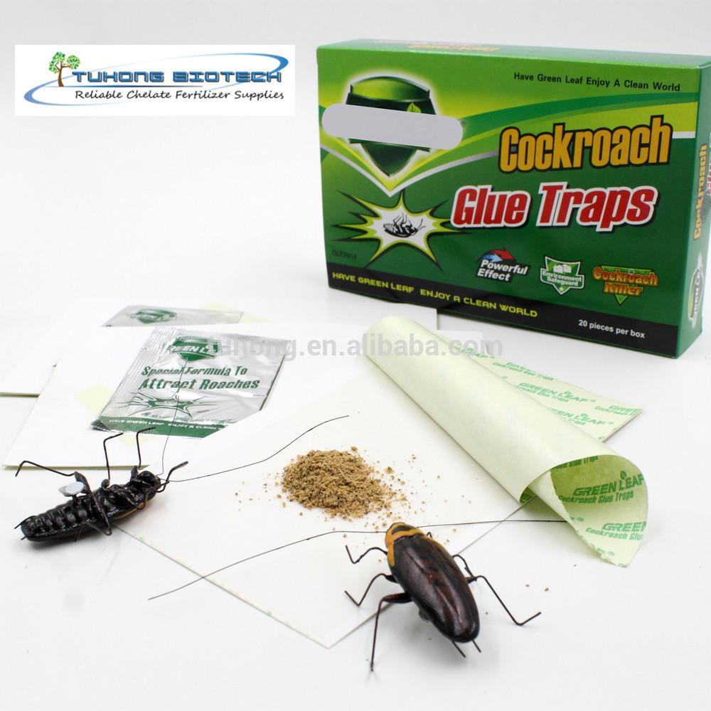 Лучшие средства от тараканов: рейтинг, плюсы и минусы, критерии выбора
