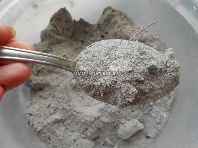 Боремся с тлёй, используя золу, мыло, шланг и средство для мытья посуды