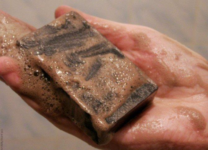 Помогает ли хозяйственное и дегтярное мыло против клопов