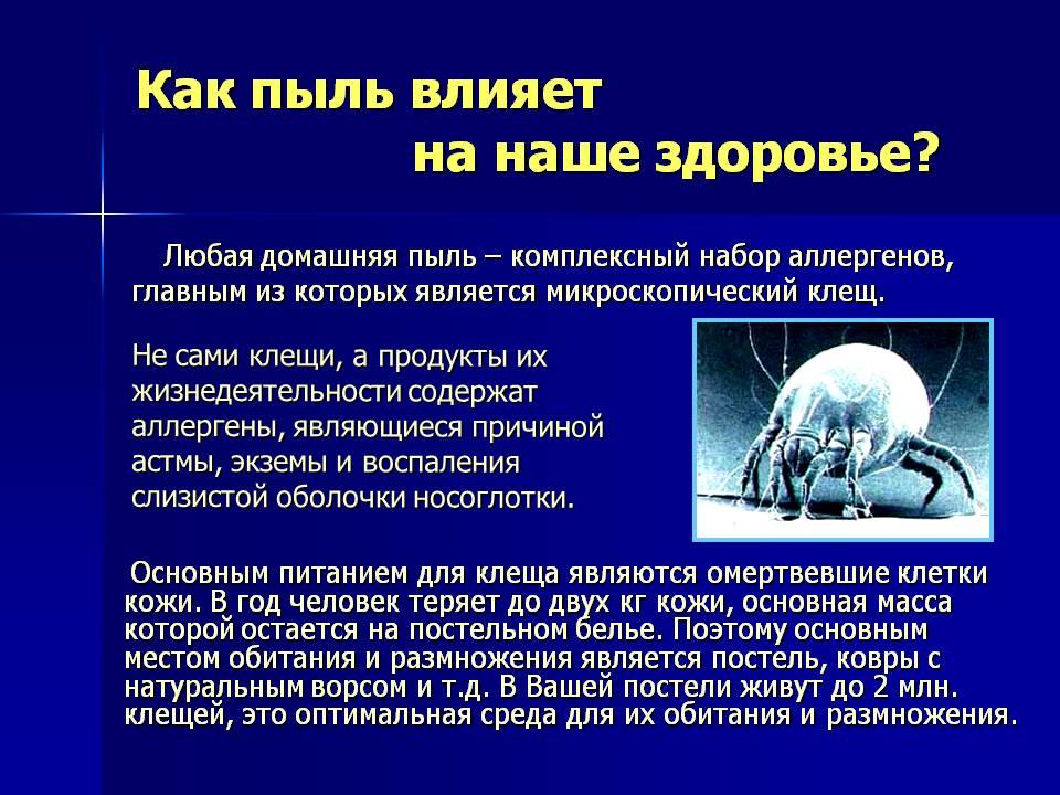 Пылевой клещ: что это такое, и какие виды бывают, где они живут и чем опасны, а также необходимо ли лечение после его укусов и как от него избавиться?  русский фермер