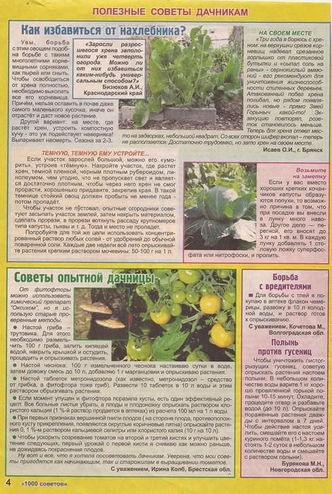 Борьба с хрущем на огороде: и в саду, методы борьбы