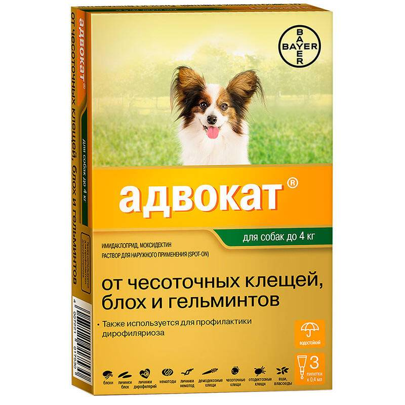 Адвокат / advocate (капли) для собак и кошек   отзывы о применении препаратов для животных от ветеринаров и заводчиков