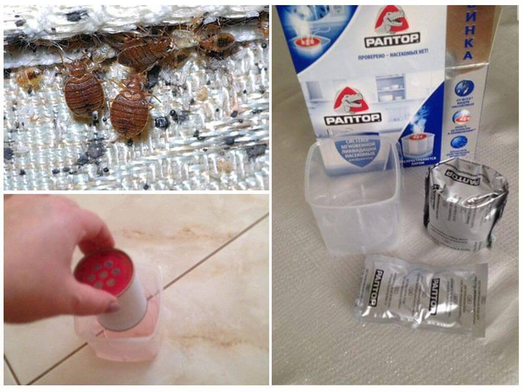 Раптор от тараканов – как пользоваться гелем, аэрозолем, ловушкой и аквафумигатором?