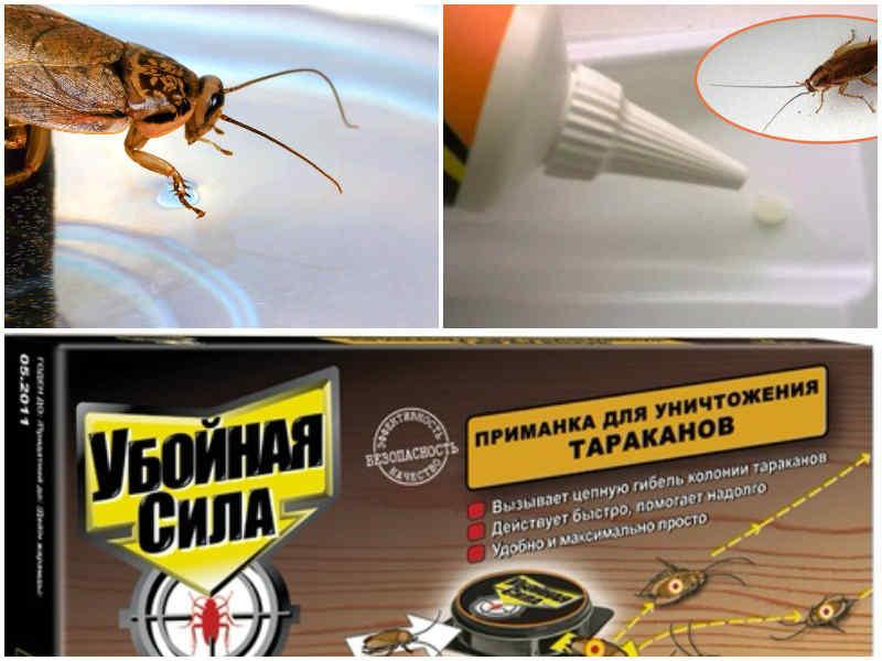 Средство от тараканов - проверенные действенные способы борьбы и рейтинг лучших с описанием