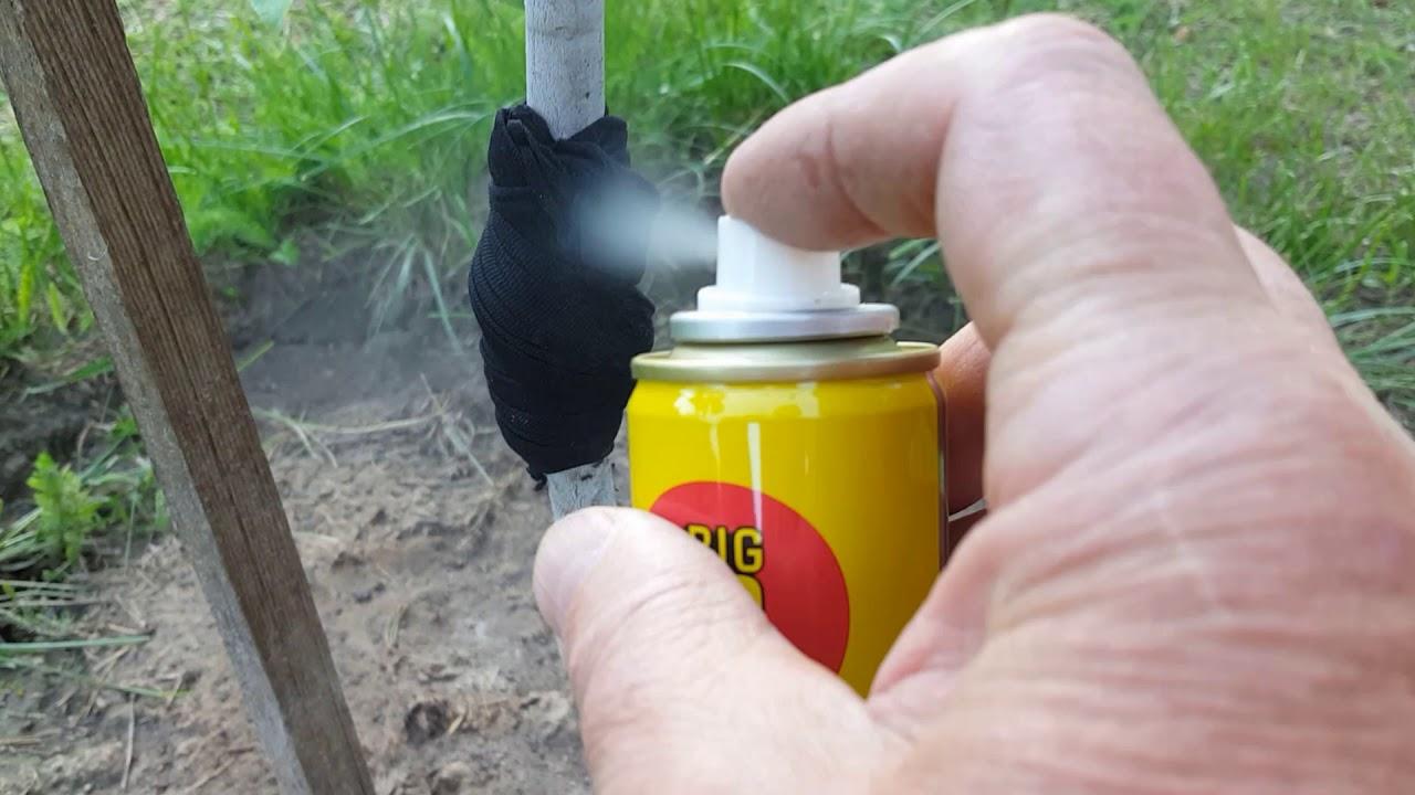 Подробнее об обработке растений горчичным порошком