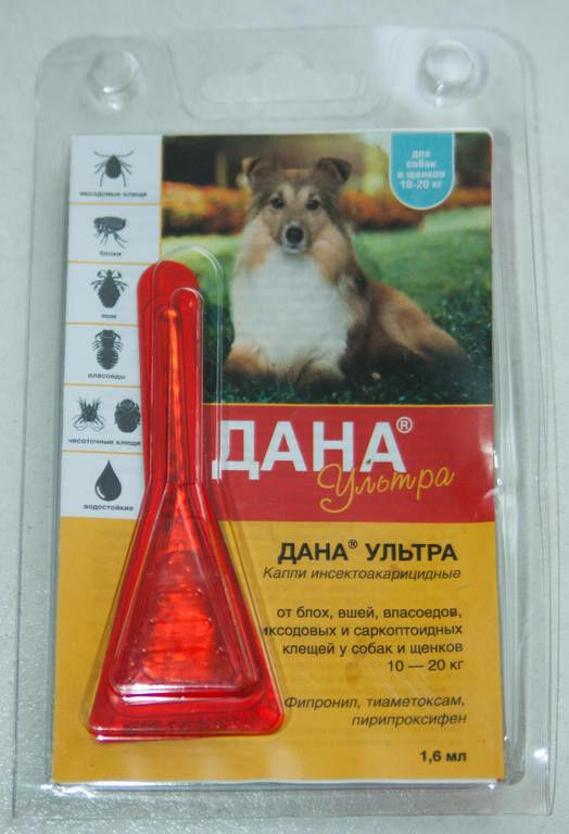 Лучшие капли от блох для собак