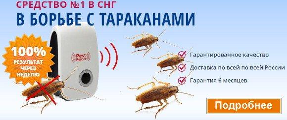 Народные средства от тараканов в квартире: выбираем самое эффективное