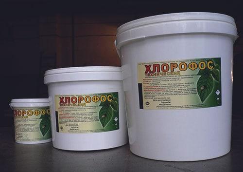 Средство от клопов хлорпирифос
