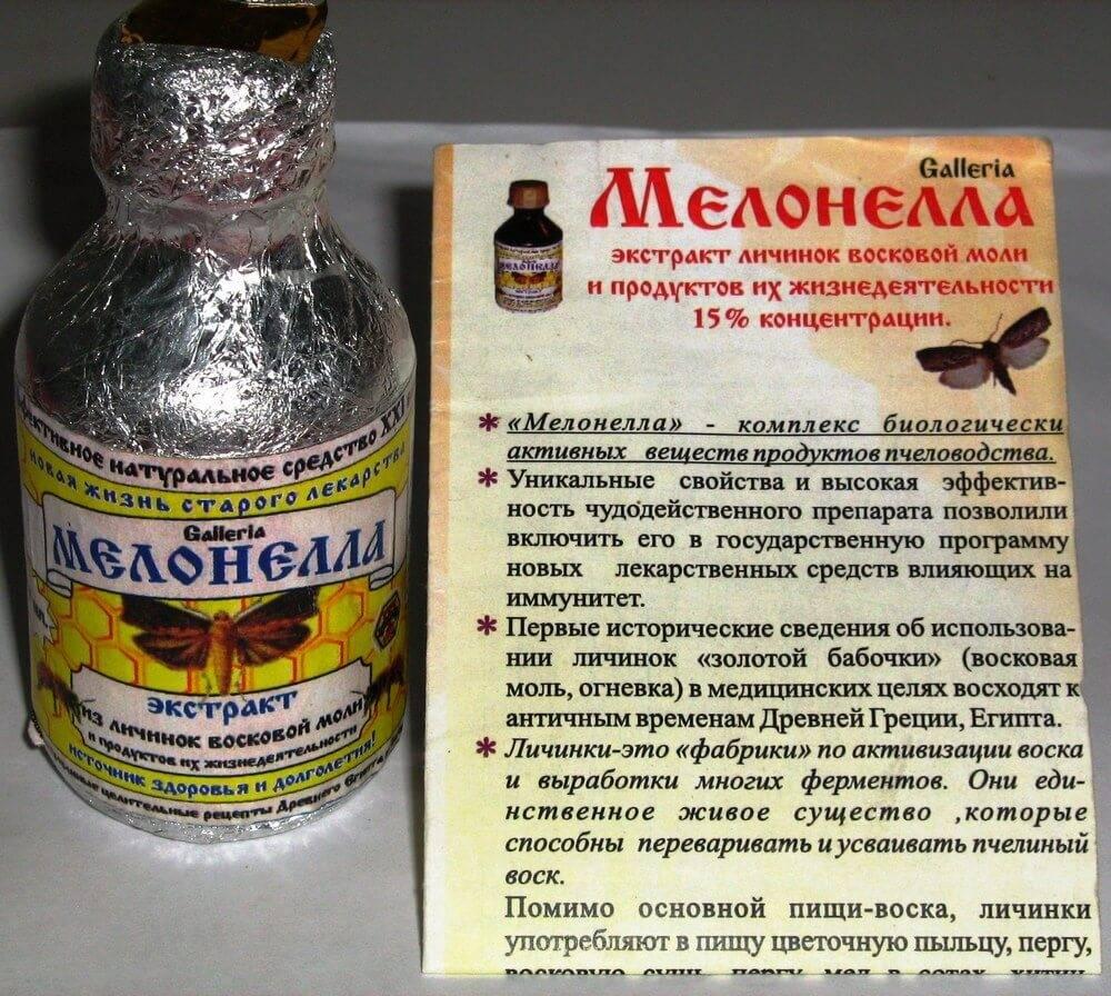Восковая моль: лечение, настойка, свойства экстракта. инструкция по применению препарата