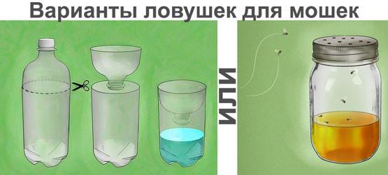 Ловушка для мошек своими руками из бутылок и других средств