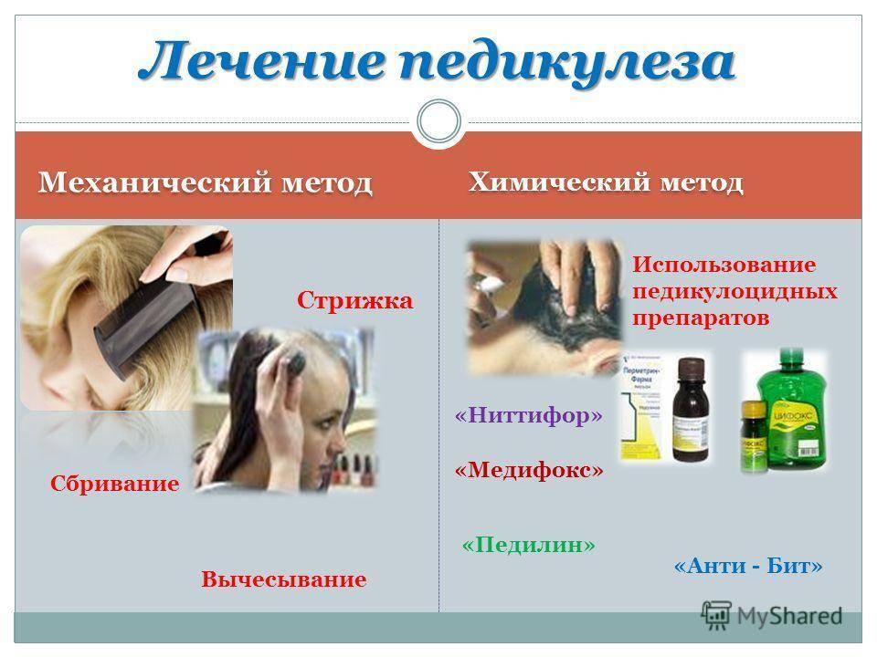 Педикулез: лечение в домашних условиях. чем лечить педикулез