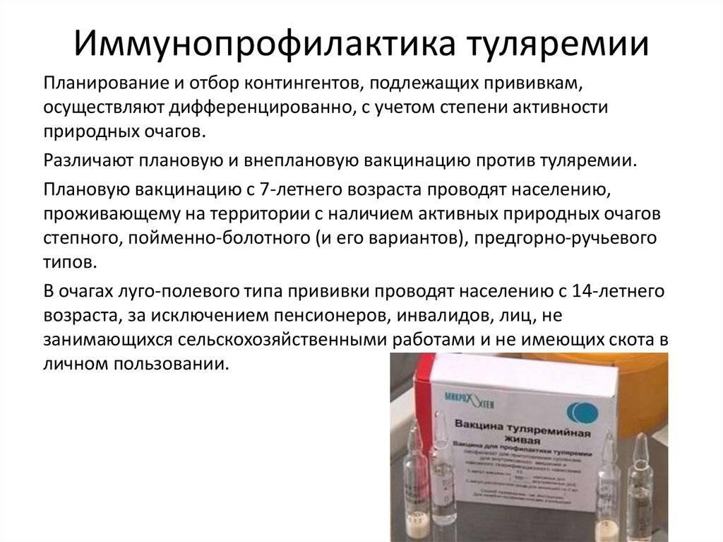 Прививка от туляремии: делать или нет, показания, реакция на вакцину