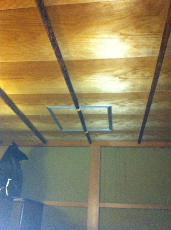 Как избавиться от шершней под крышей дома: эффективные способы