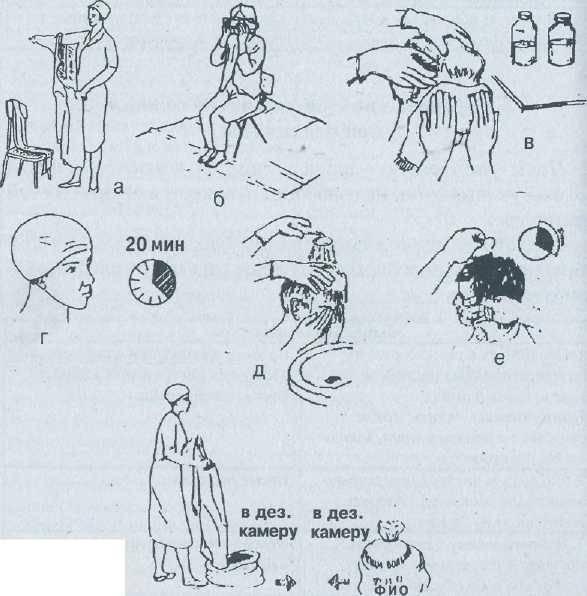 Обработка волосистой части головы при педикулезе: алгоритм действия