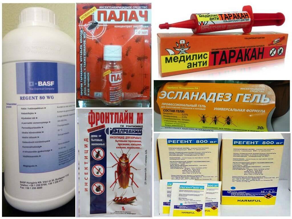 Фипронил от тараканов - отзывы и инструкция по применению