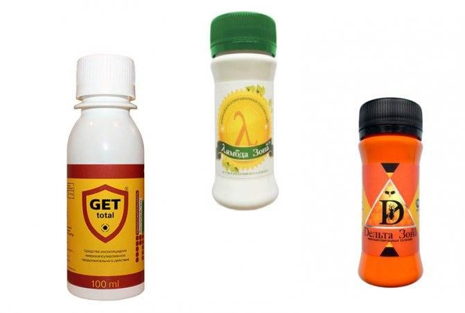 Самые эффективные средства и отравы от тараканов