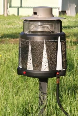 Как избавиться от комаров на дачном участке: репелленты и народные методы