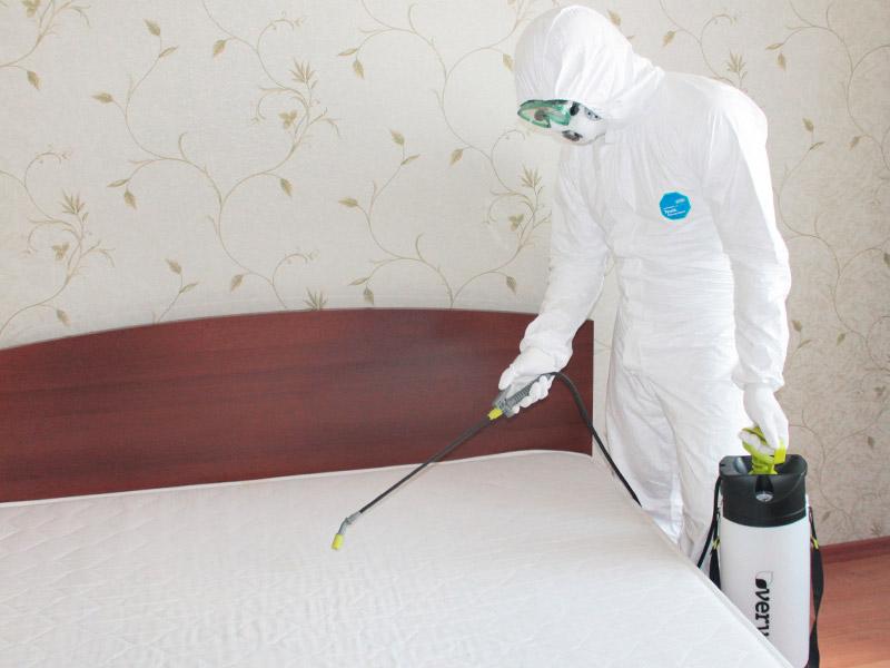Дезинфекция от тараканов в квартире или на предприятии москва