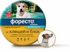 Как выбрать ошейник от клещей для собак. топ-5 лучших
