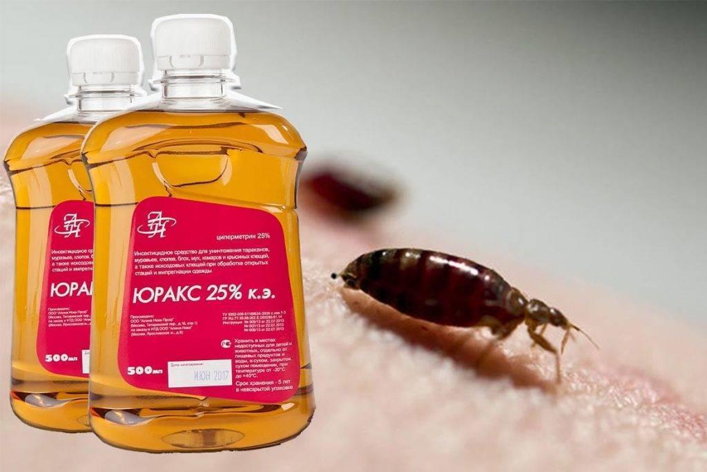 Юракс от клопов и тараканов: инструкция по применению, отзывы и эффективность средства