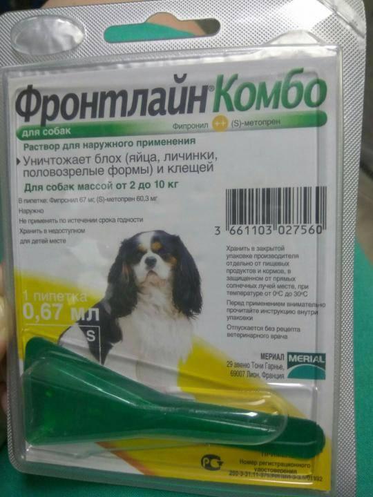 Спрей и капли для щенков фронтлайн. ? подробная инструкция для пременения [отзывы ветеринаров]