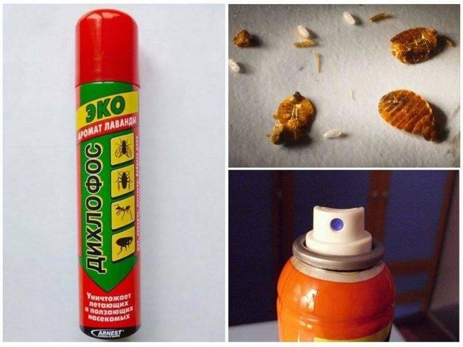 Дихлофос держим оборону от тараканов и прочей нечисти