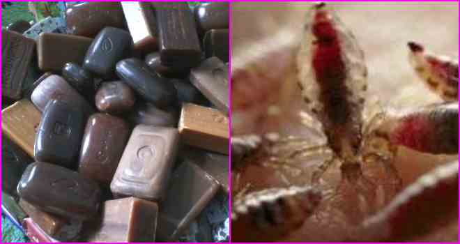 Дегтярное мыло от вшей и гнид: способы применения, помогает или нет + отзывы