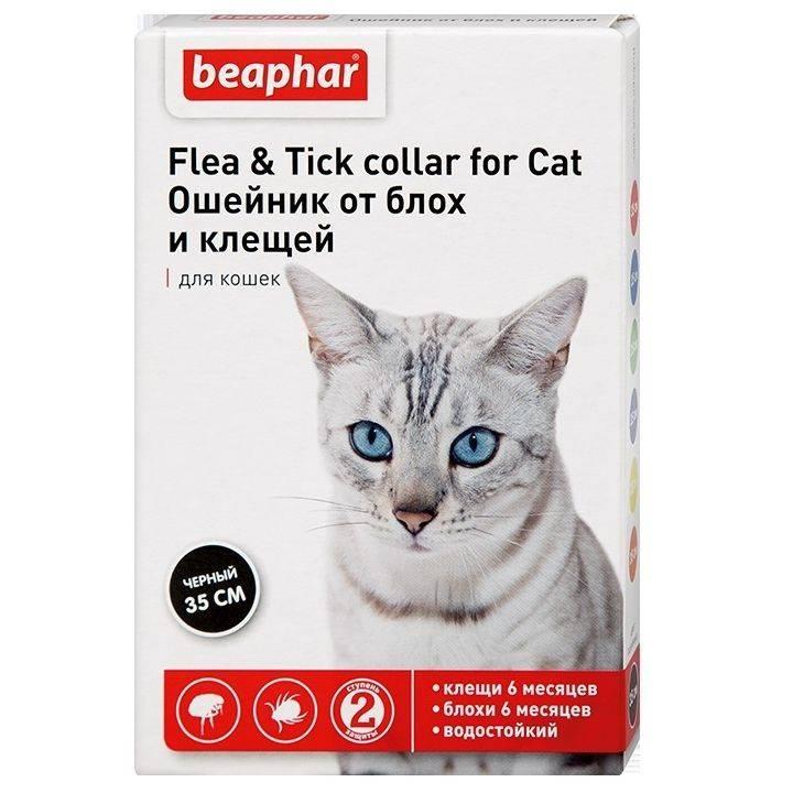 Обзор действенных ошейников против блох для котов: hartz, beaphar, bolfo и барс