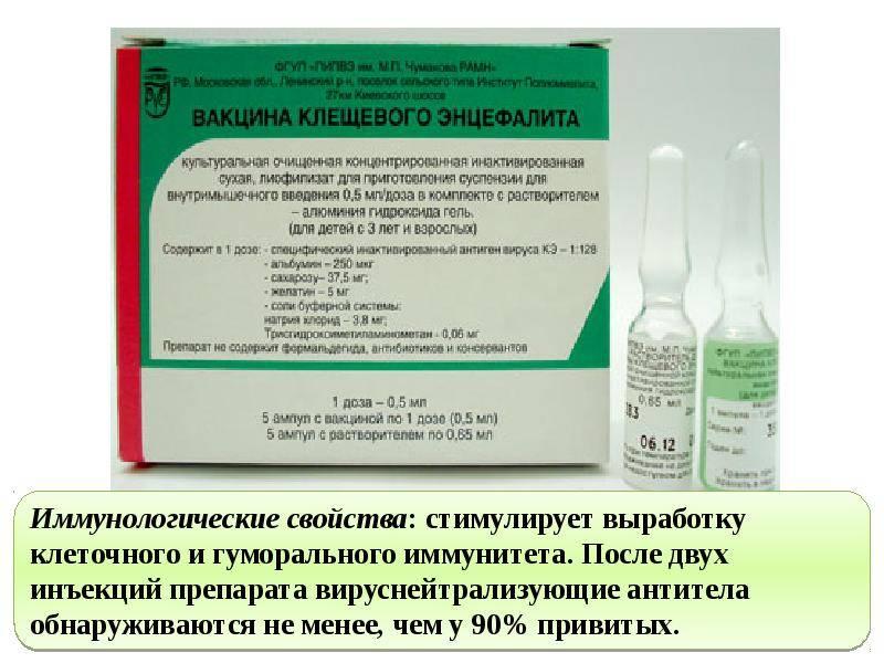 Вакцина от клещевого энцефалита: инструкция, реакция
